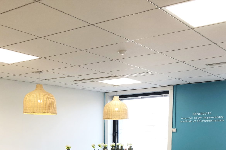 Faux plafond, Dalles - Bureaux, Open Space, Office - Travaux ...
