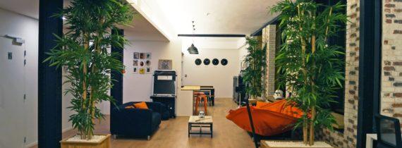 Aménagement espace détente start up - Sublime Skinz Paris